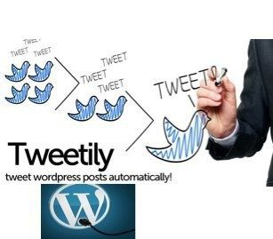 Steadily Growing your Twitter Following Using the WordPress Plugin Tweetily