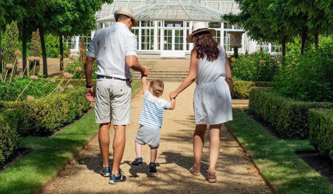 ReWire 493: Creating Your Own family Values