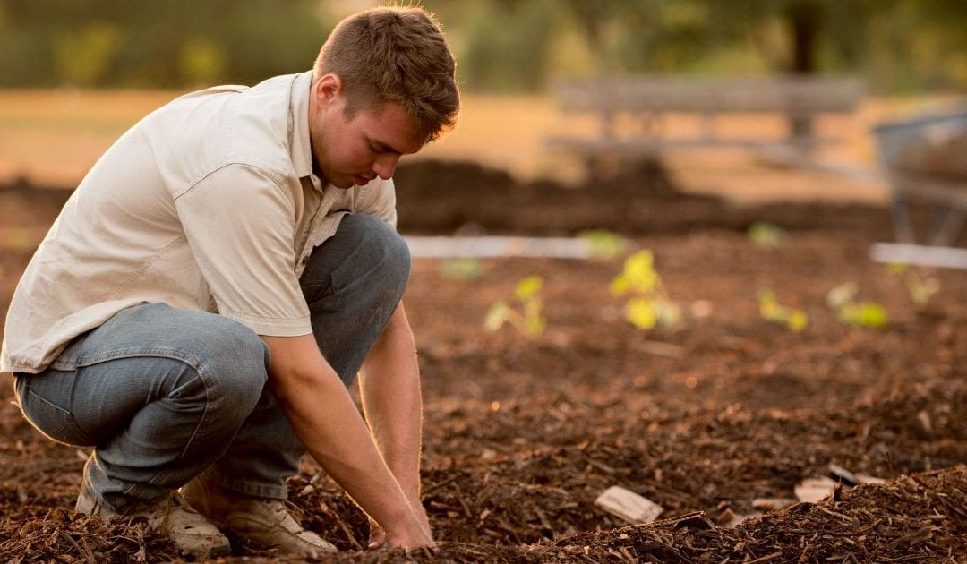 ReWire 576: The More Seeds You Sow The More That Will Land On Good Soil