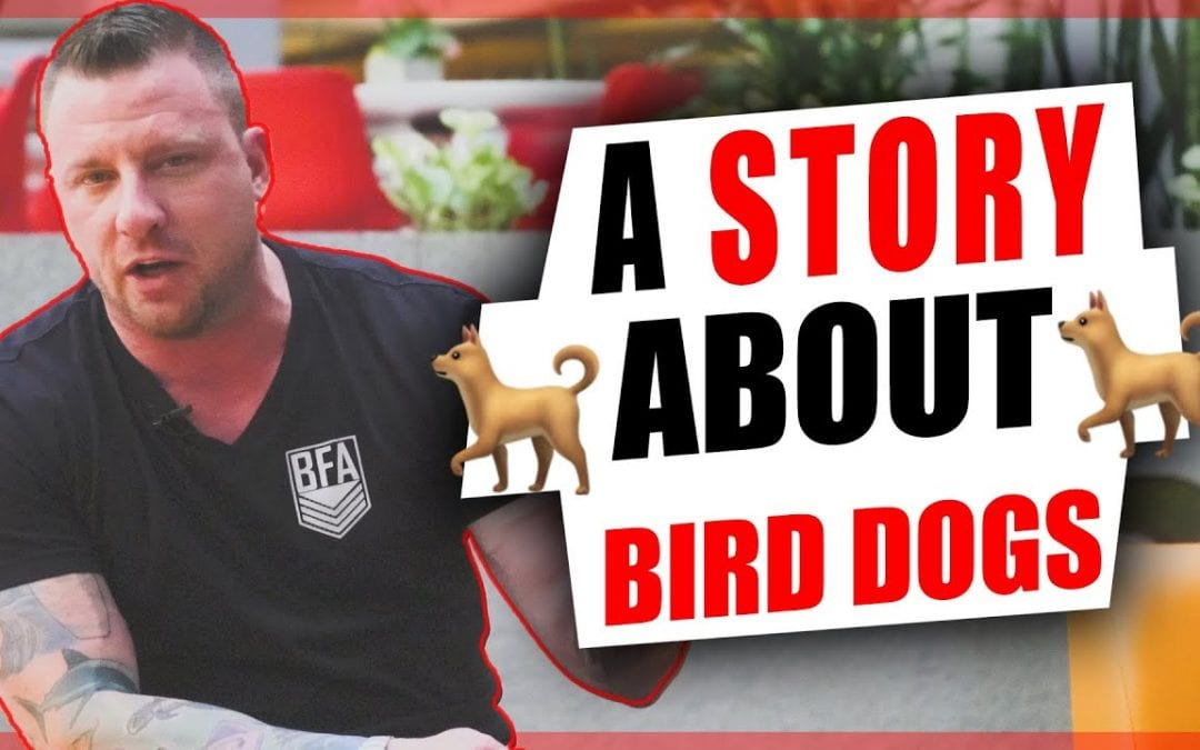 A Story About A Little Kid and A Bird Dog [Video]